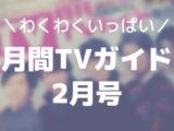 月間TVガイド2月号(関西版)を買った感想