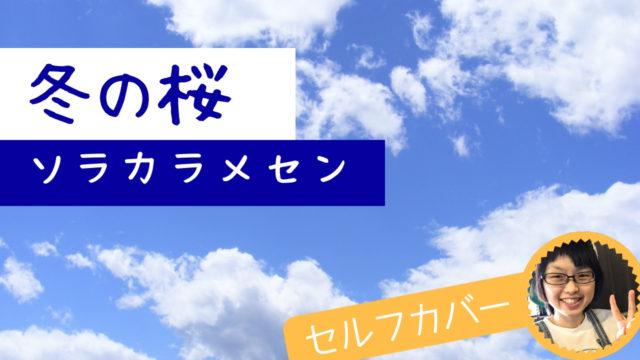 【冬の桜/ソラカラメセン】