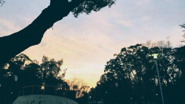 夕焼け 写真 風景