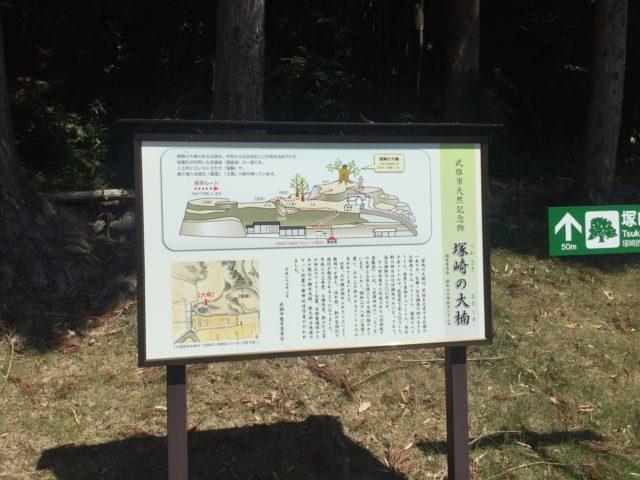 塚崎の大楠 佐賀 樹齢2000年