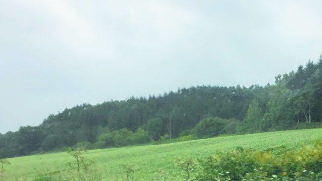 北海道 そば