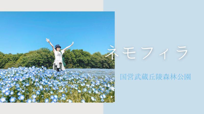 国営武蔵丘陵森林公園 ネモフィラ 埼玉